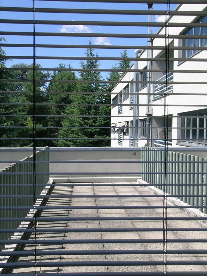 Trwałe i wysokiej jakości rolety do osłonięcia okien
